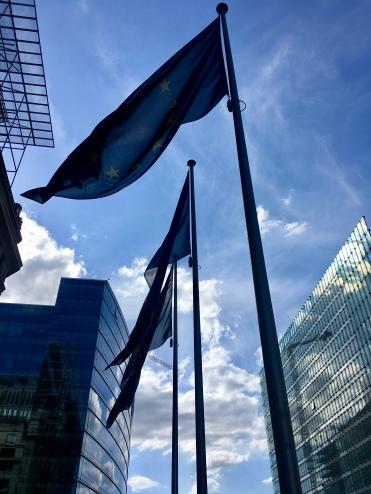 The EU district/@dariasdiaries