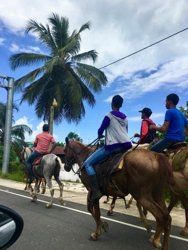 Local horse marching/©dariasdiaries