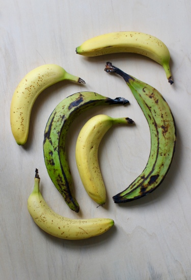 Plantains and bananas/©dariasdiaries